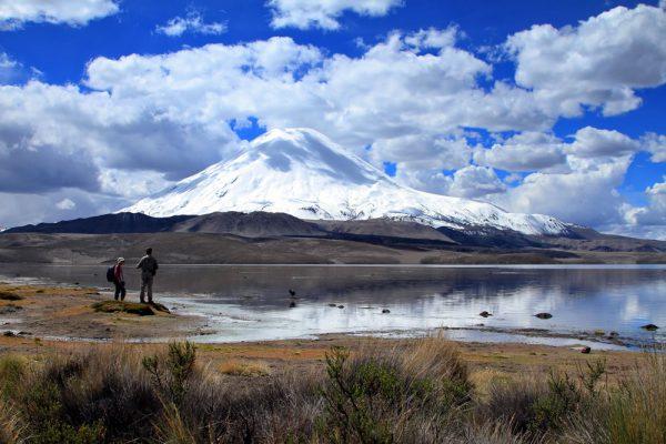 Aymara Tour Lauca National Park