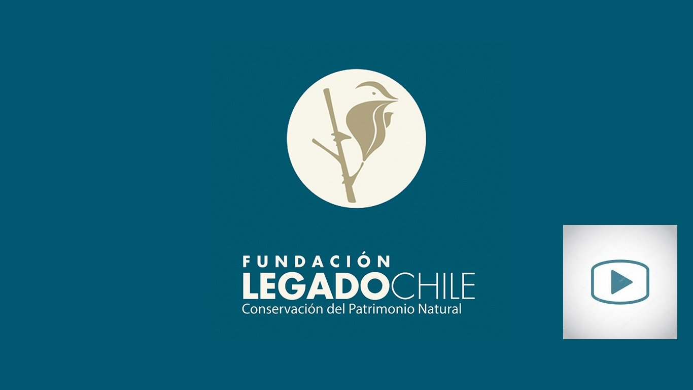Legado Chile Logo
