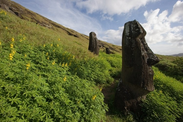easter island view with moai and hill