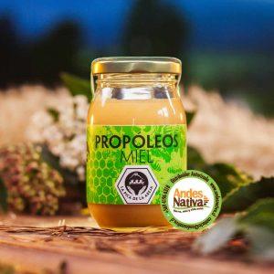 Propoleos con miel del sur de Chile